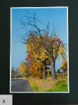 Barevný podzim_3